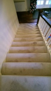 Evesham Carpet Cleaning