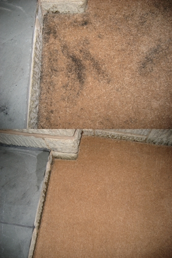 Carpet stain removal Malvern