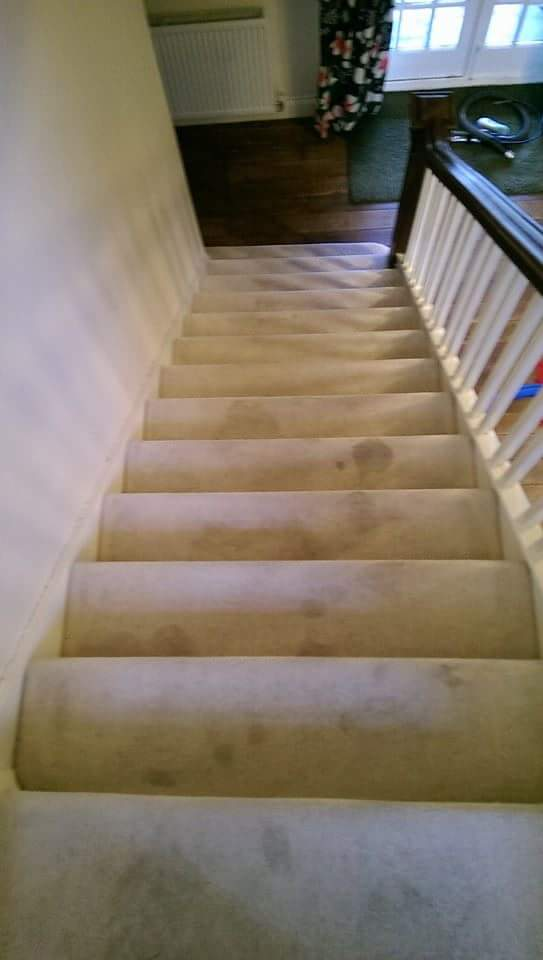 carpet cleaning pershore